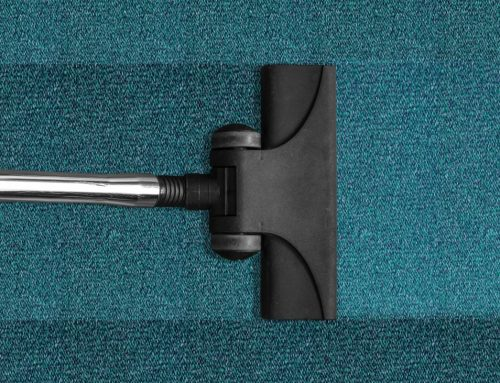 Tips to keep your carpet clean