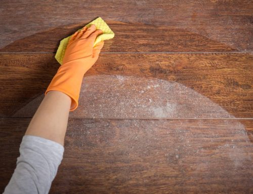 Speed Cleaning Germs in the Home